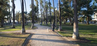 Join Santa Monica's tree planting event on National Arbor Day!