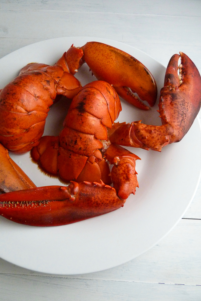 simple but elegant surf & turf: filet and lobster