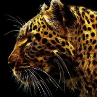 Golden leopard