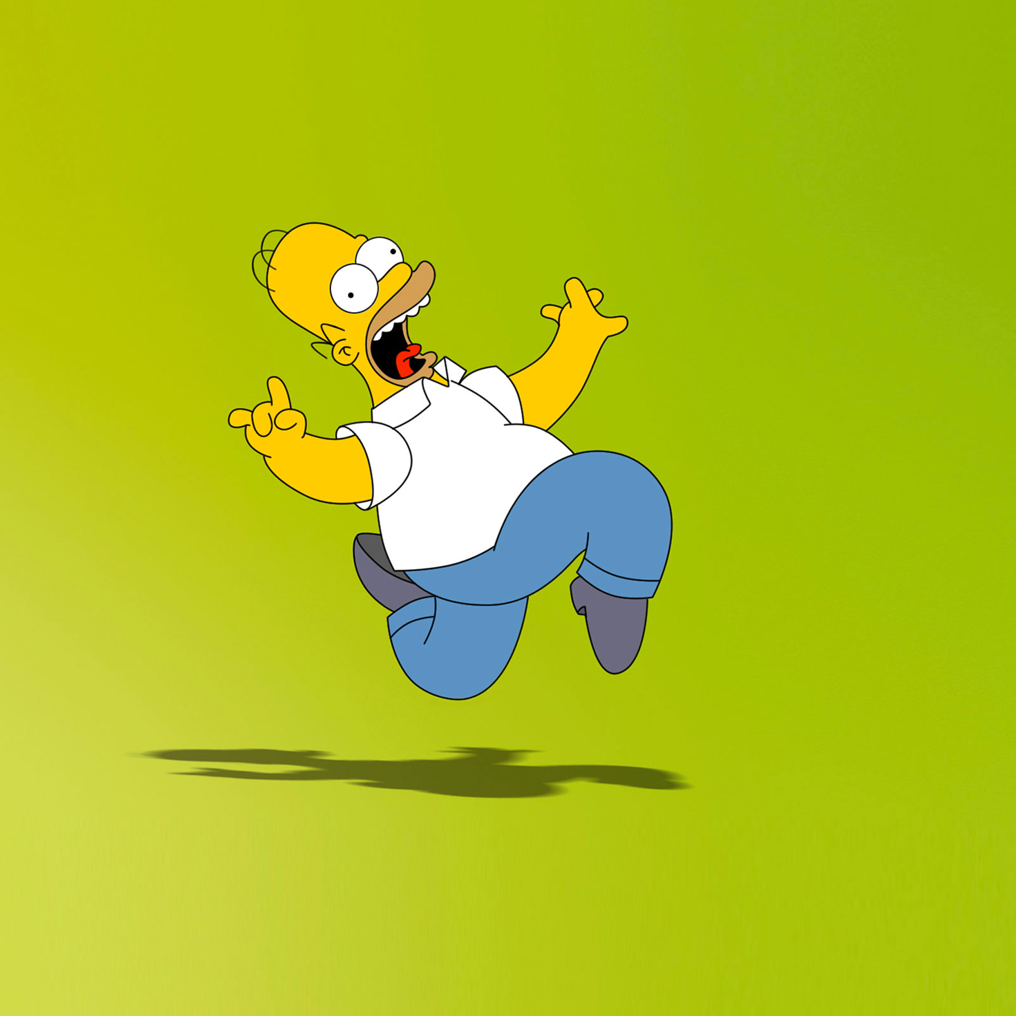 Simpson Homer 3Wallpapers iPad Retina Simpson Homer   iPad Retina