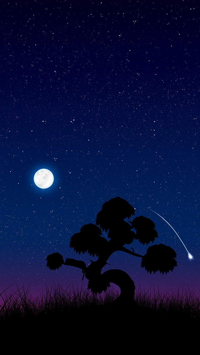 Moon Lit Night 3Wallpapers iPhone 5 Moon Lit Night