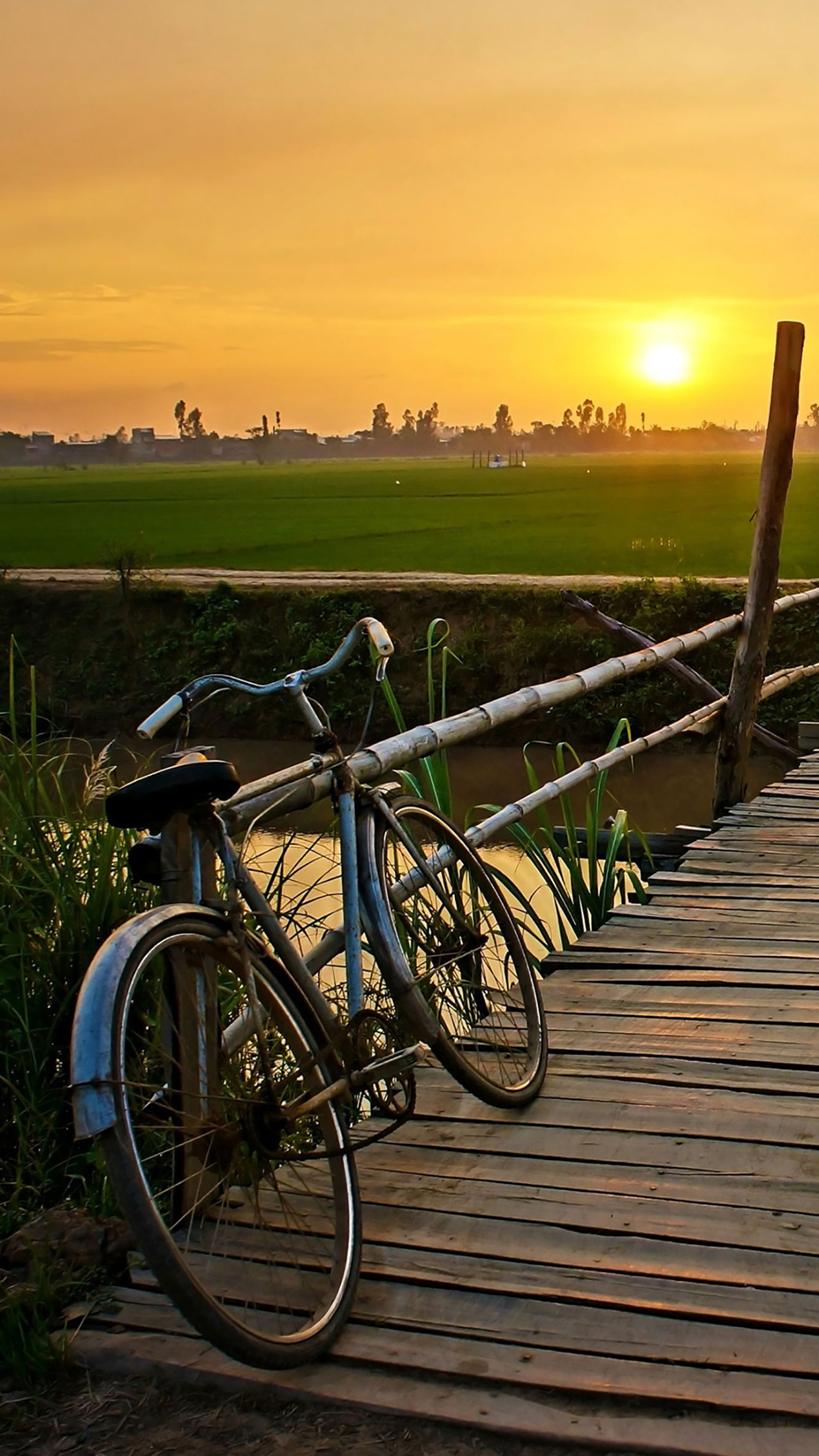 Bicycle 2 3Wallpapers iPhone Parallax Bicycle : 2