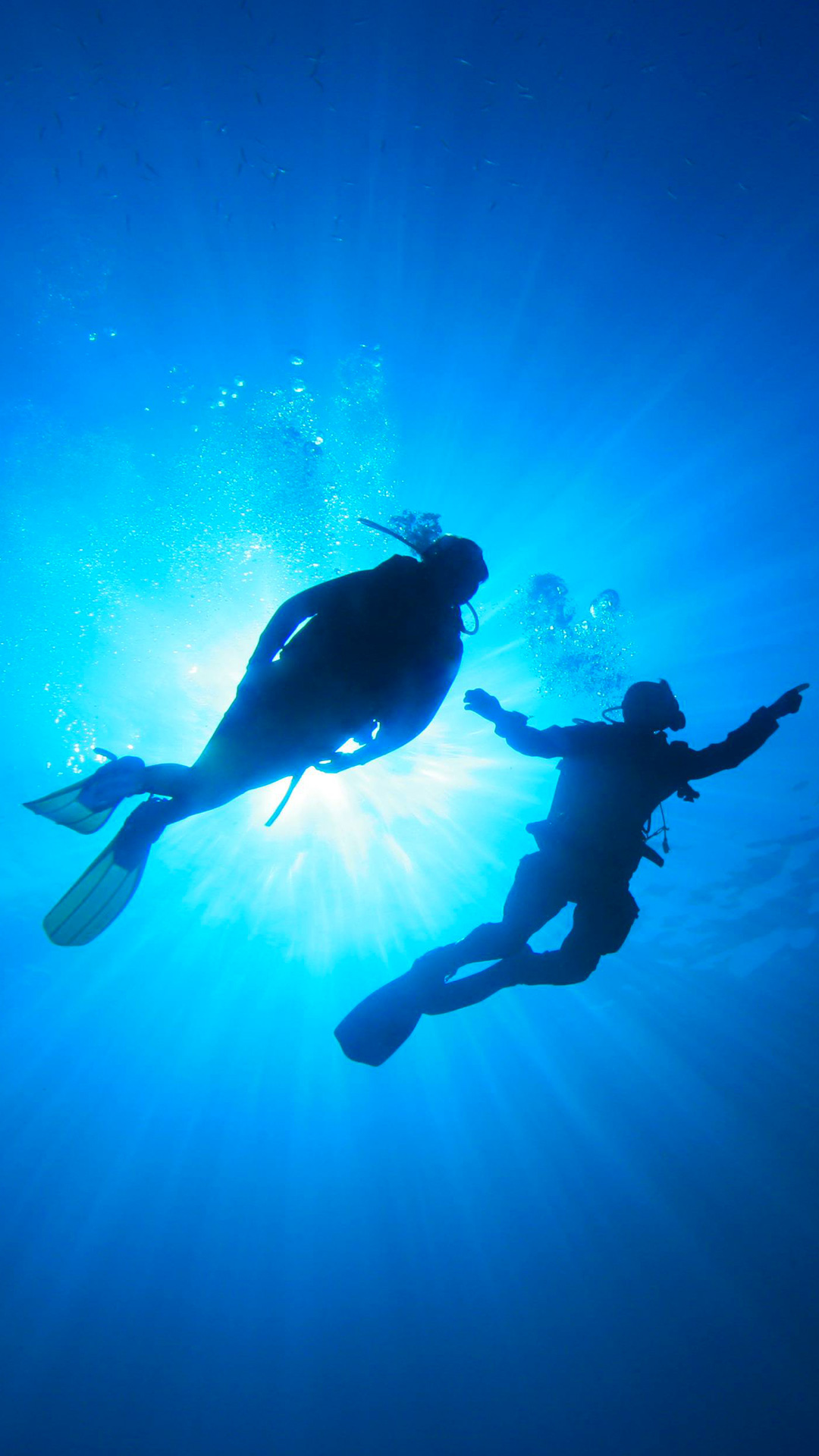 scuba diving diver ocean sea underwater Scuba Diving