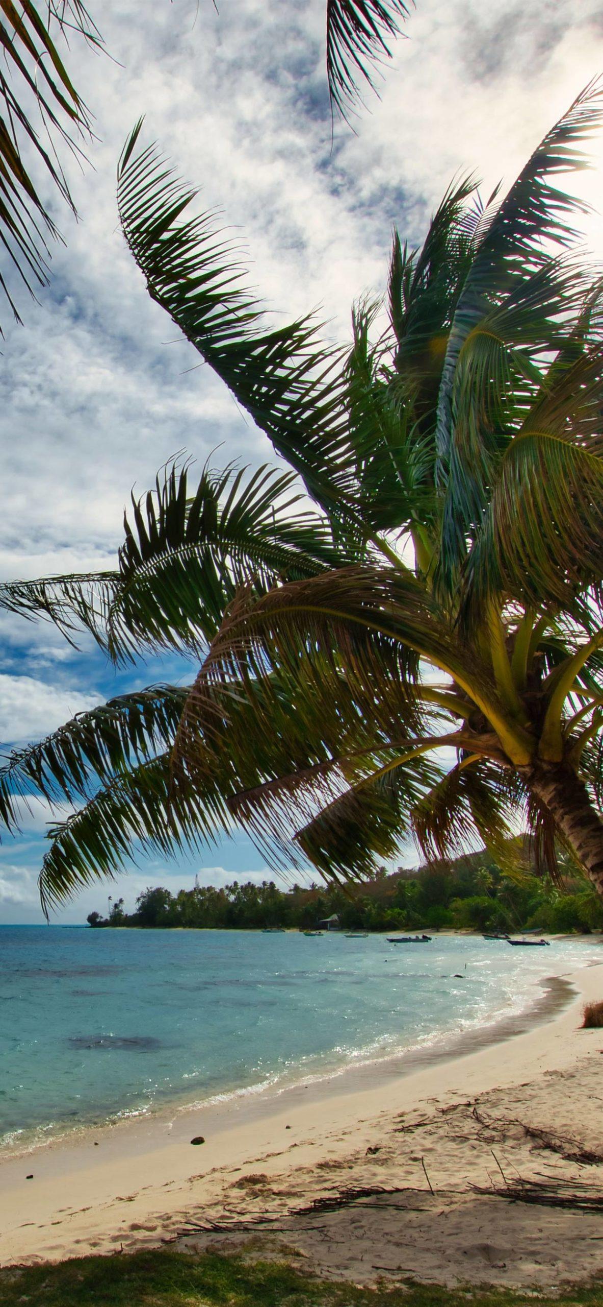 iphone wallpaper polynesia scaled Polynesia