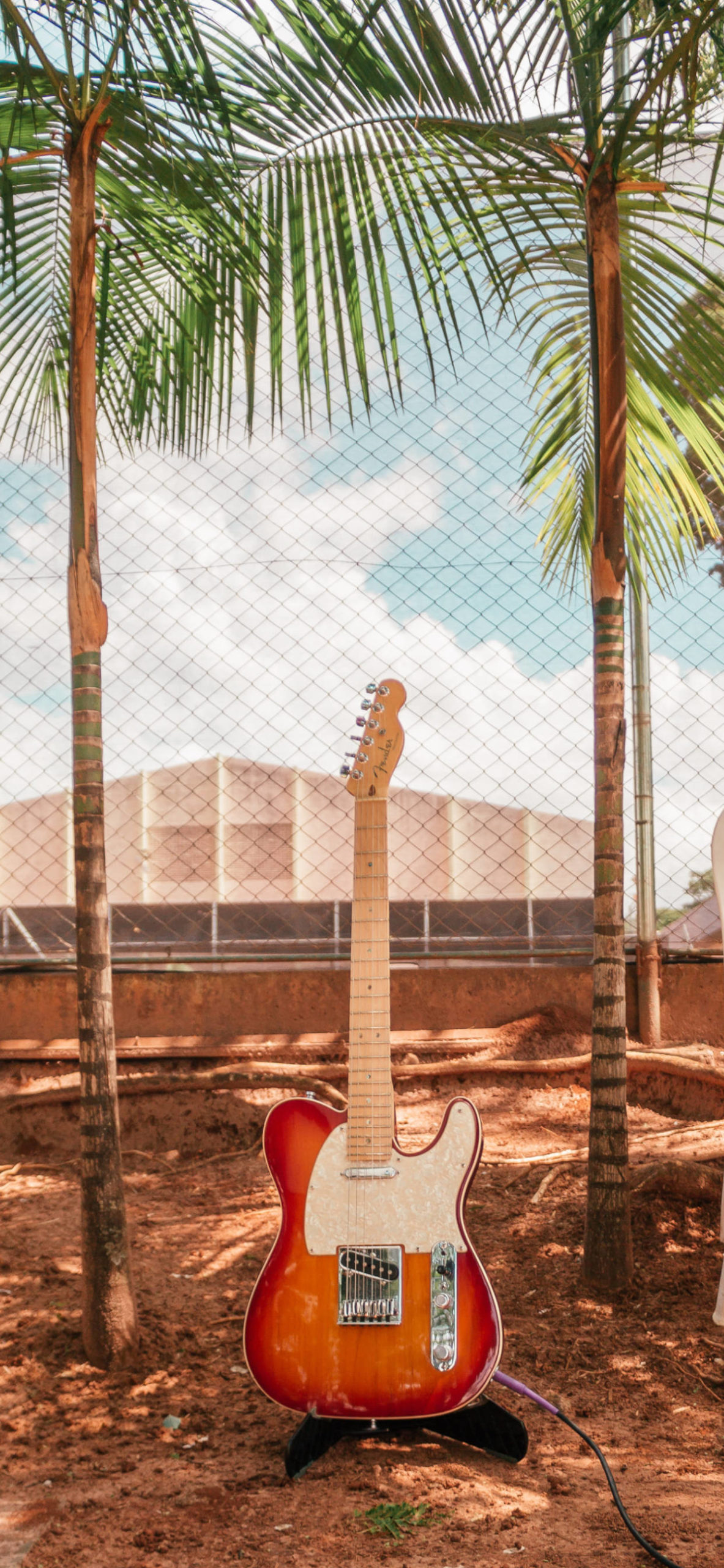 iPhone wallpapers guitar palms scaled Guitar