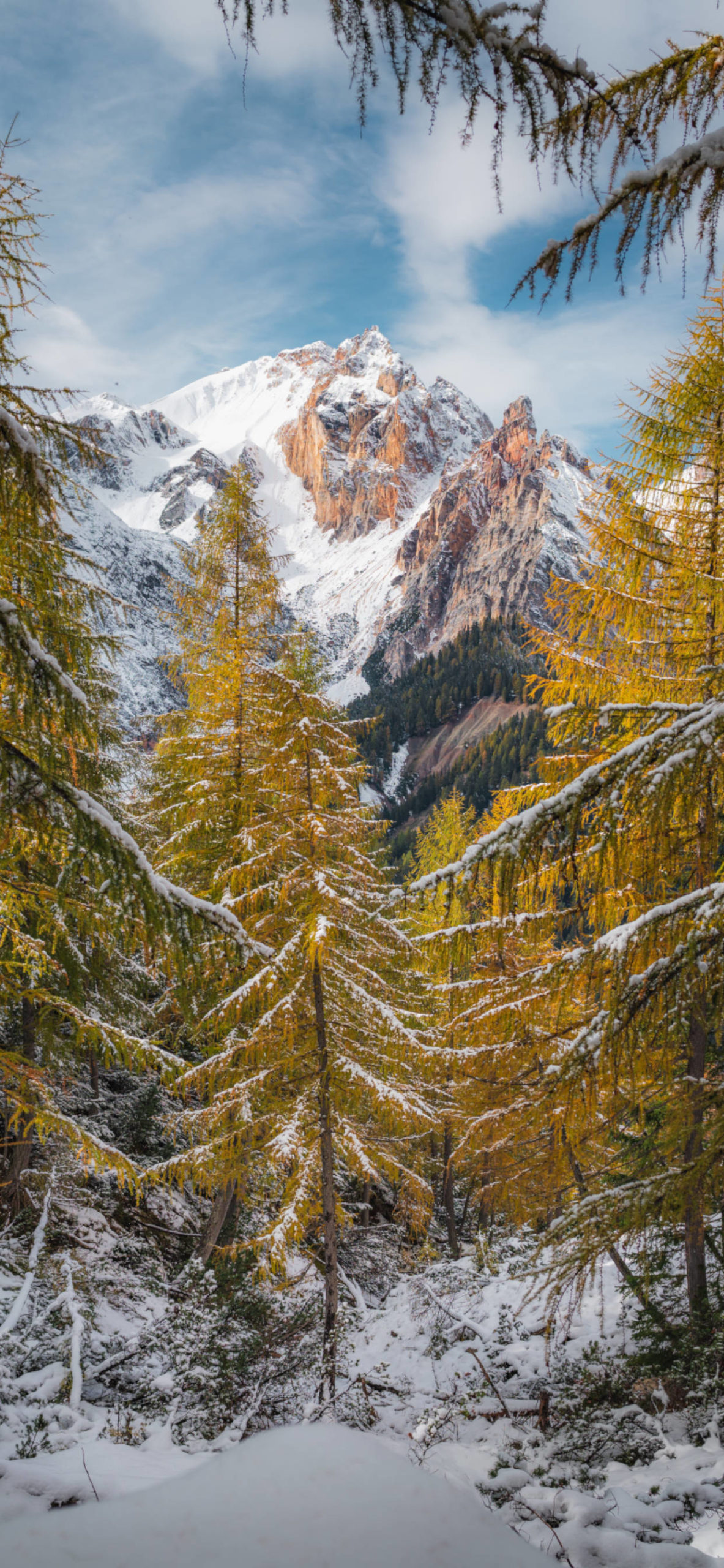 iPhone wallpapers mountains trees scaled Mountains