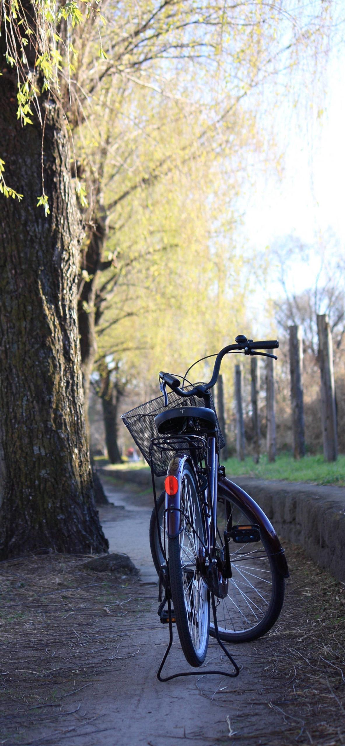 iPhone wallpapers bike street scaled Bike