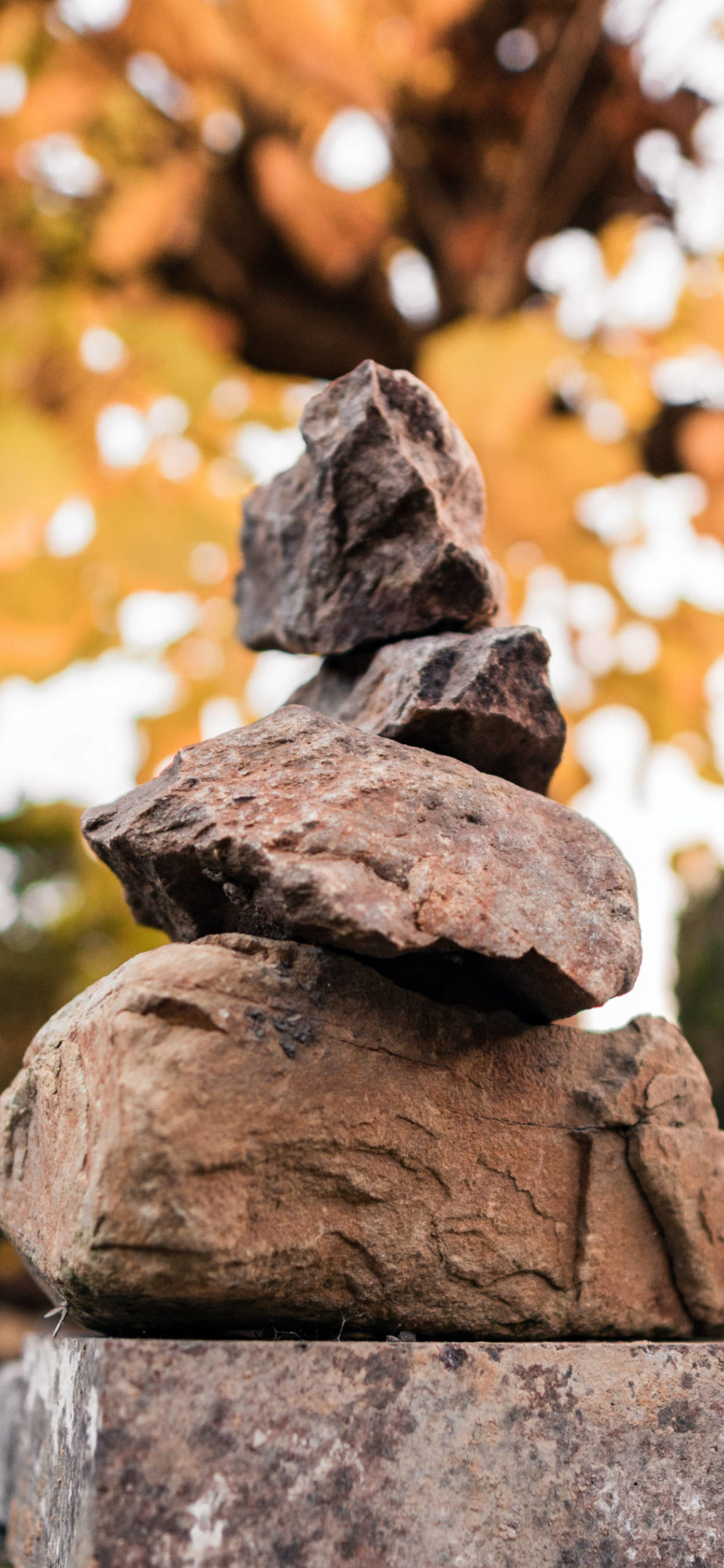 iPhone wallpapers rocks mountain forest scaled Rocks