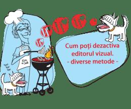 disable-visual-editor