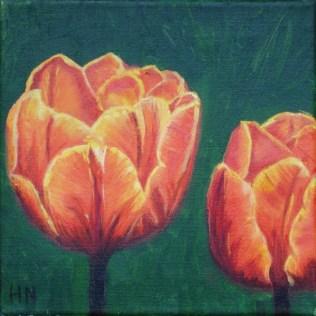 Tulips by Helen Norfolk, Oil on Canvas 20cm x 20cm