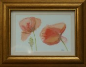 Small Poppies by Helen Norfolk, Watercolour on Paper