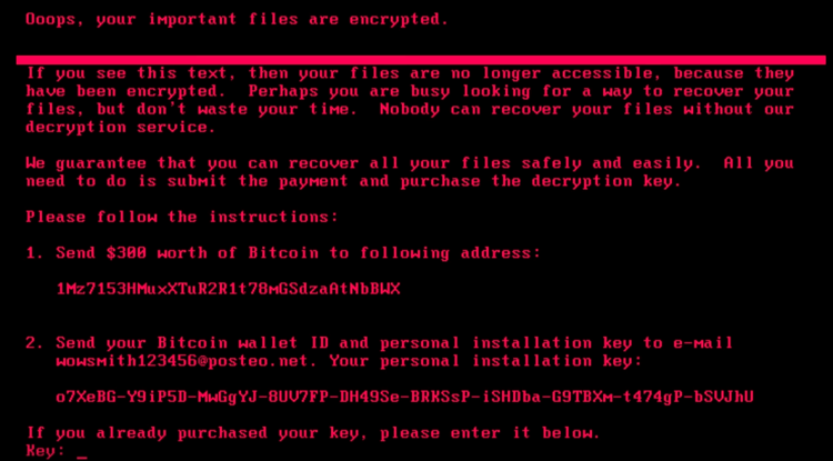 Screenshot of Petya Ransomware
