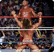Warrior Blows Hogan