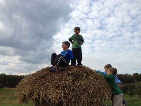 On Top Of The Hay Hut