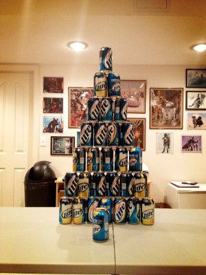 The 2013 Beeramid