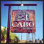 Cabo - The Cabo Wabo Cantina