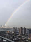 1 World Trade Center Rainbow