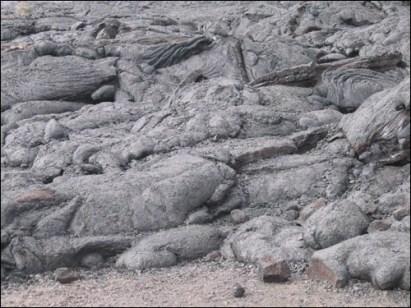 Hawaii Trip 2003 (147)