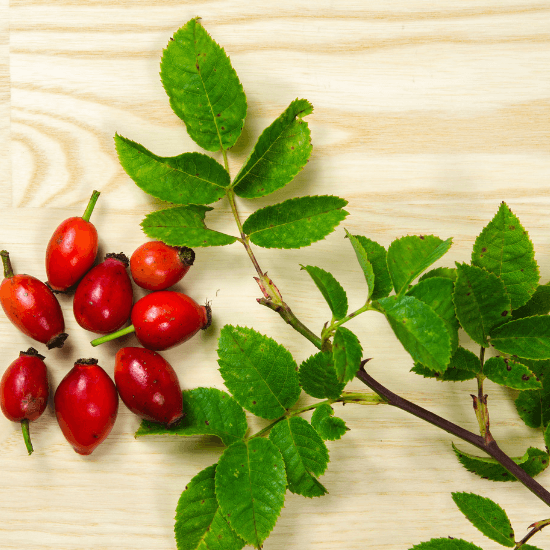 Is Rosehip Oil the New Retinol?