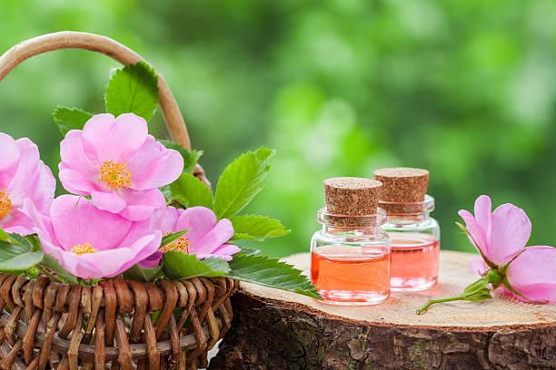 Rosehip Oil Benefits