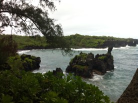 Lava rocks that help make the black sand found here