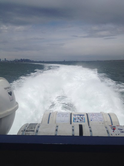 View of Boston from whale watching boat