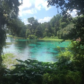 Crystal Springs, Fl