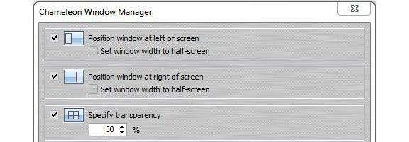 chameleon window manager