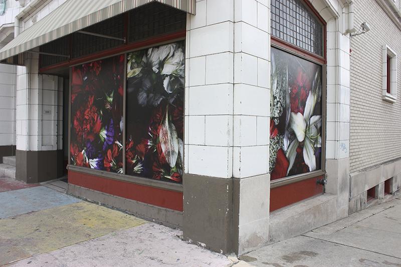 glass, signage, vinyl, adhesive, windows, wraps, printing, grand rapids