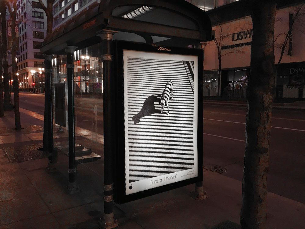 bus shelter for JCDecaux prtined with Apple