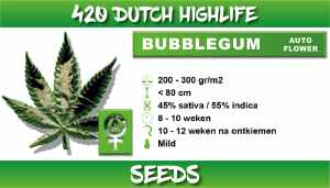 bubbelgum autoflower