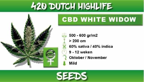 cbd white widow