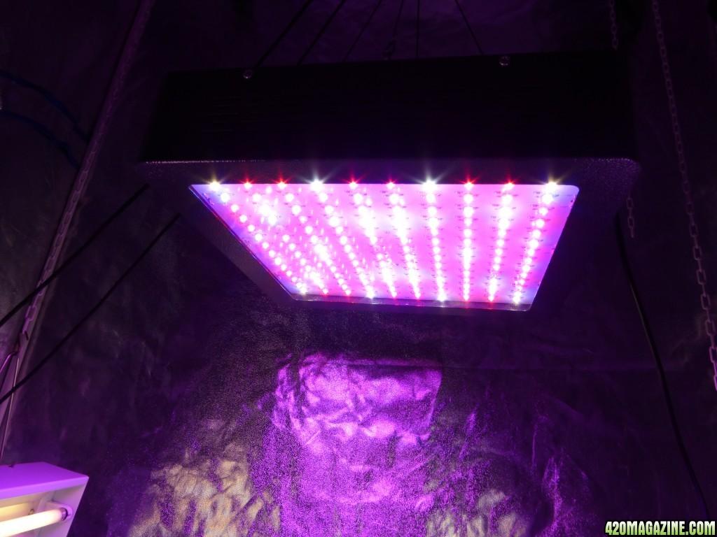 Mars Hydro Led Grow Lights