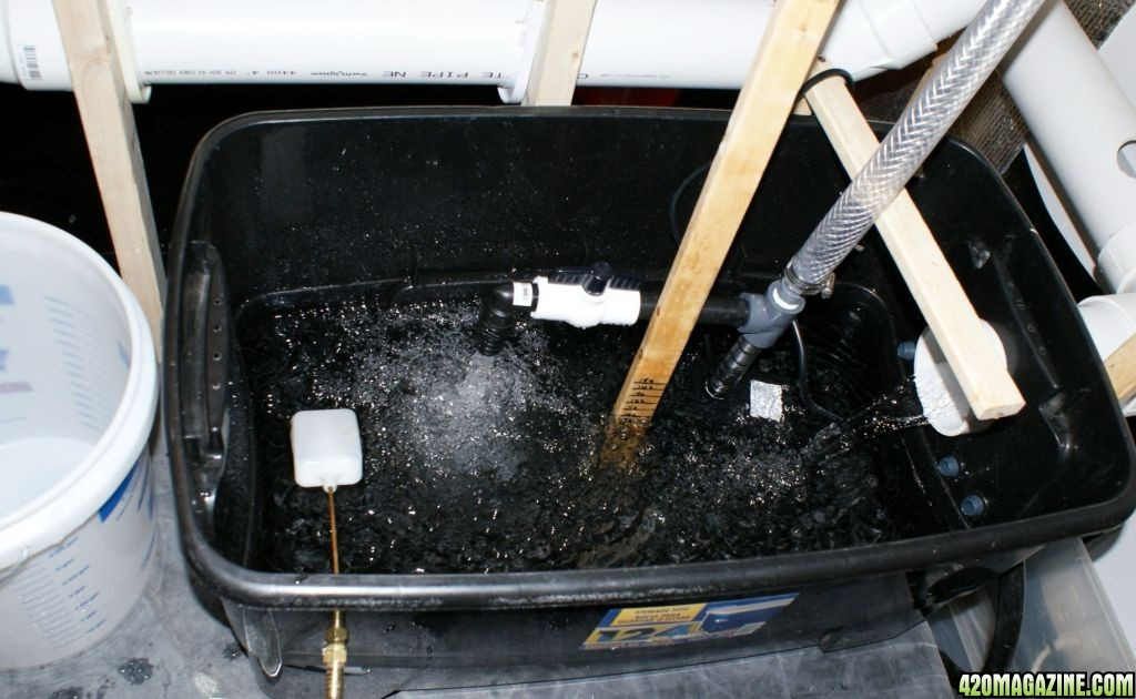 System Bucket Diy Recirculating Dwc