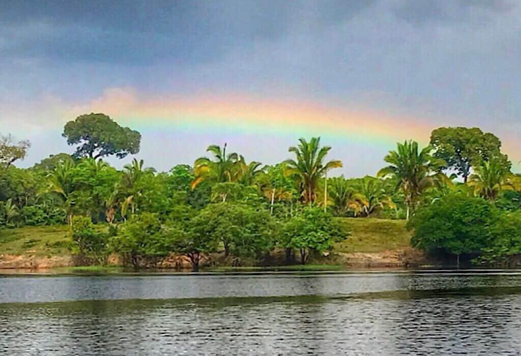 Rainbow in the Amazon Jungle