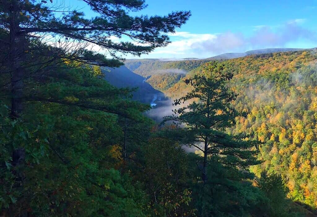 Pine Creek Valley Overlook with fog in the valley deep below