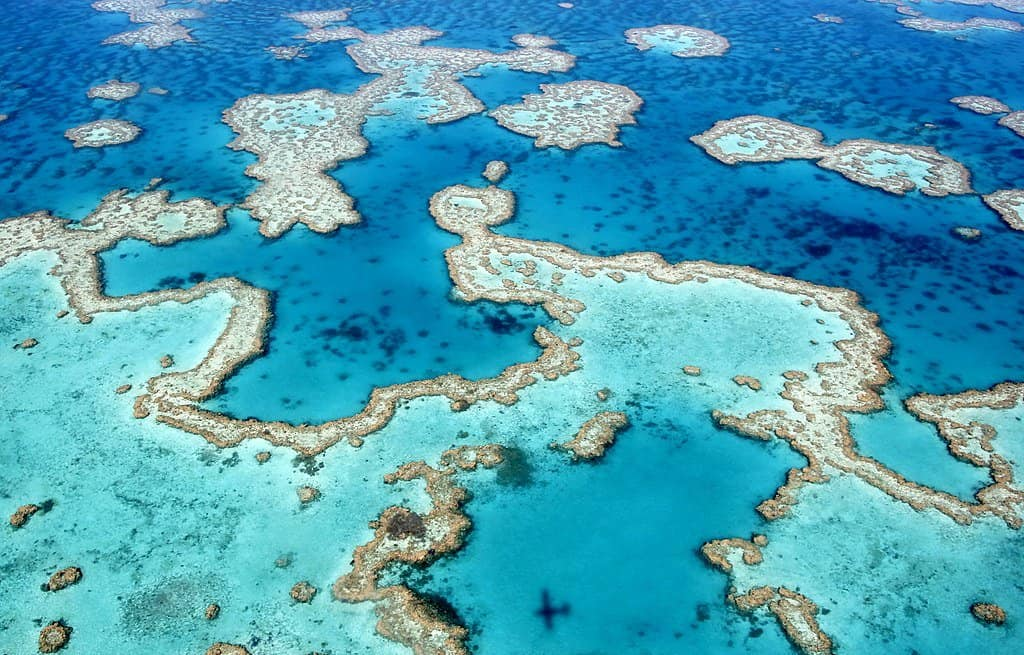The Great Barrier Reef by Ayanadak123 (https://commons.wikimedia.org/wiki/File:The_dazzling_colours_of_the_Great_Barrier_Reef_near_Airlie_Beach,_Whitsunday_Islands,_Queensland.jpg)