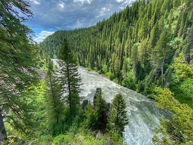 River just below the Upper Messa Falls lined with evergreens. Idaho