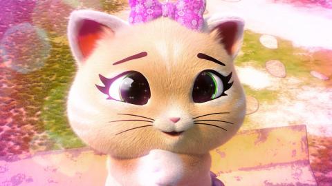 Il Super Potere Di Pilou Video 44 Gatti