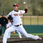 ハタケヤマを使用しているプロ野球選手(投手編Part1)