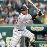 阪神タイガースの鶴岡選手がハタケヤマのバットで5打点!