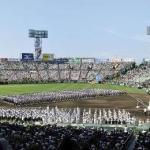 夏の応援セール開催中!!
