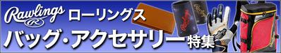 15-7-raw-bag_acce
