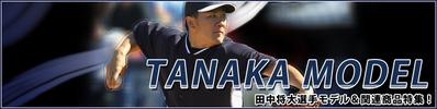 2014-tanaka