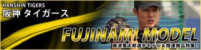 2014-fujinami