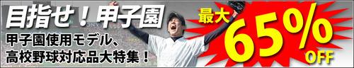 2012-koushien-sp-title