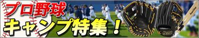 16-3-camp