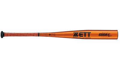 FZ730 BAT11684