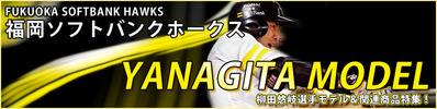 2016-yanagita