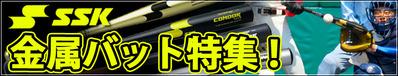 14-04-ssk-bat